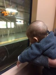 Viajar com Bebé 2